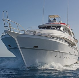 Mini Safari on board the HEPCA R/V Amr Ali Red Sea Defender