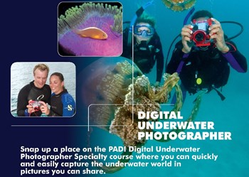 Digital UW Photographer