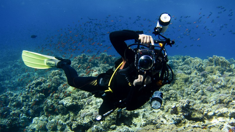 Dive Nakari with Saeed Rashid