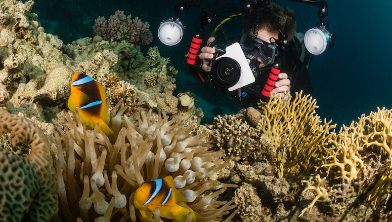 Underwater Photography Workshop with Paul 'Duxy' Duxfield