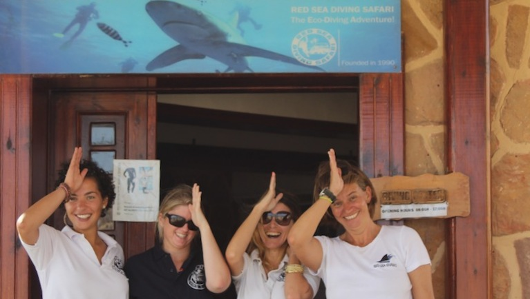 Red Sea Sharks Workshop