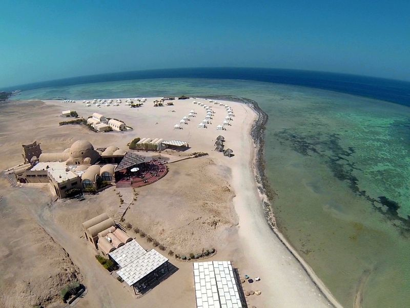 Red Sea Diving Safari Workshops